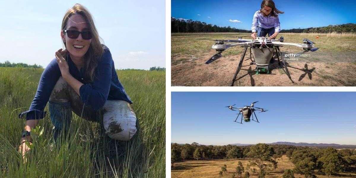 Australiana desarrolla unos drones capaces de plantar hasta 100 mil árboles por día