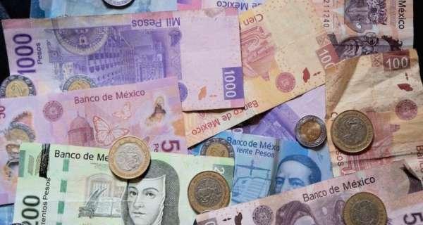 Estas son algunas de las cosas desagradables que viven en el dinero en efectivo